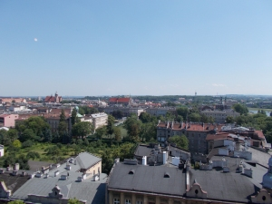 This was the view from the top of the main tower of the castle.