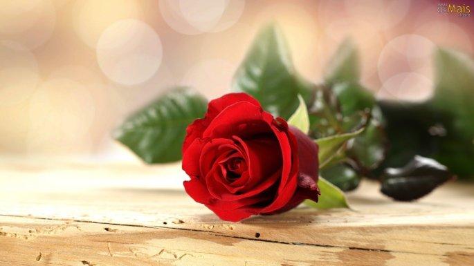 romantic-pics-10